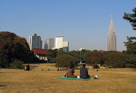 1107-Meiji Jingu-03-450