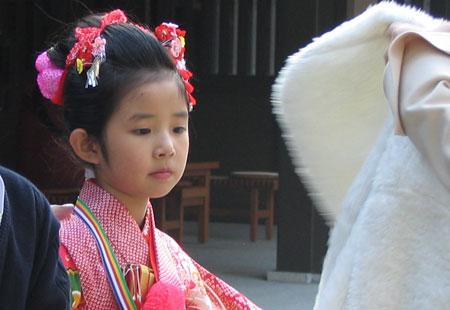 1107-Meiji Jingu-20-450