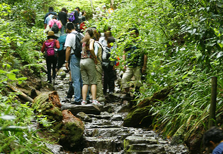 0508-Takao-Trail01